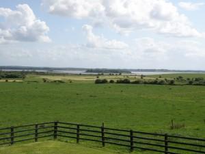 Ireland--Pastoral Scene on the River Shannon