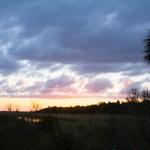 Sunset Lightc. J. P. Mahon, 2013