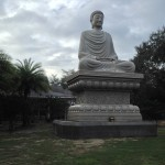 Seated Buddha at White